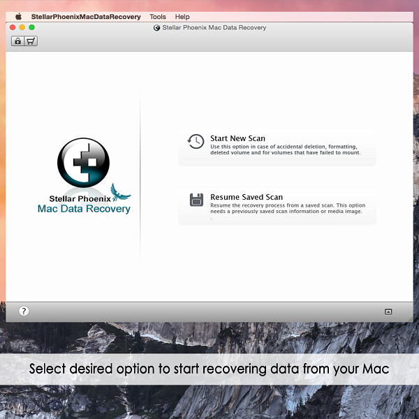 Stellar Phoenix Data Recovery for Mac | Avanquest